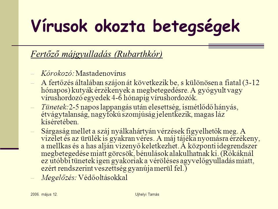 2006. május 12. Ujhelyi Tamás Vírusok okozta betegségek Fertőző májgyulladás (Rubarthkór) – Kórokozó: Mastadenovírus – A fertőzés általában szájon át