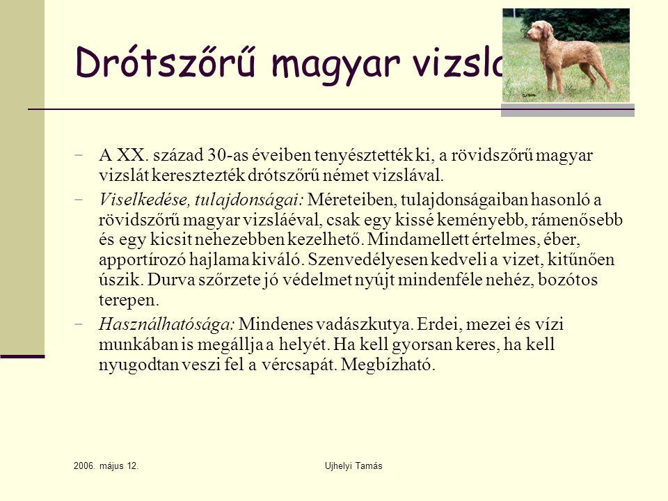 2006.május 12. Ujhelyi Tamás Drótszőrű magyar vizsla − A XX.
