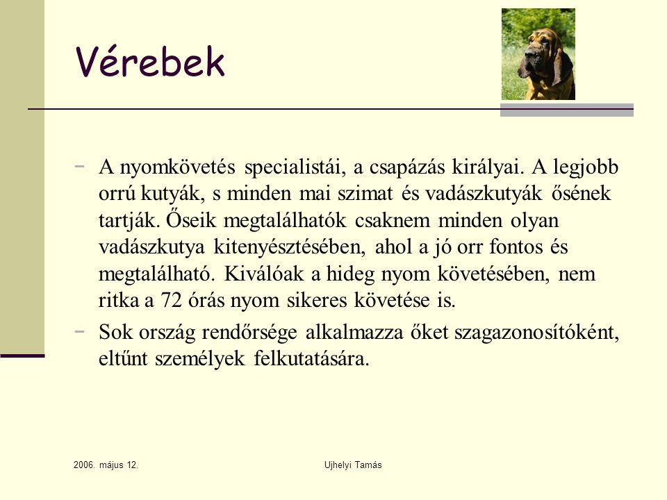 2006.május 12. Ujhelyi Tamás Vérebek − A nyomkövetés specialistái, a csapázás királyai.