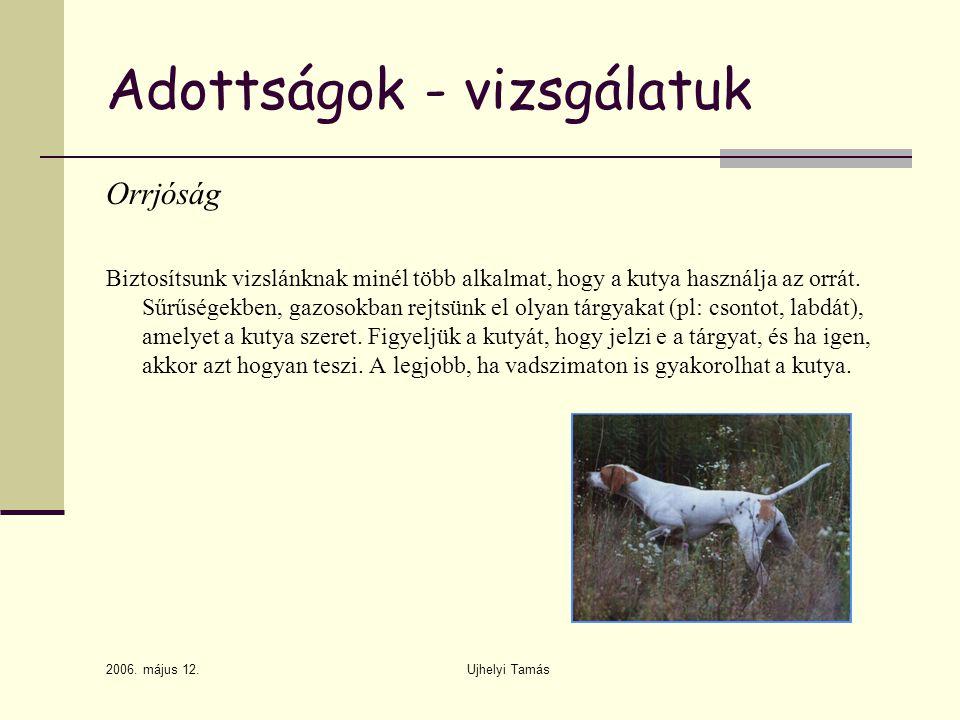 2006. május 12. Ujhelyi Tamás Adottságok - vizsgálatuk Orrjóság Biztosítsunk vizslánknak minél több alkalmat, hogy a kutya használja az orrát. Sűrűség