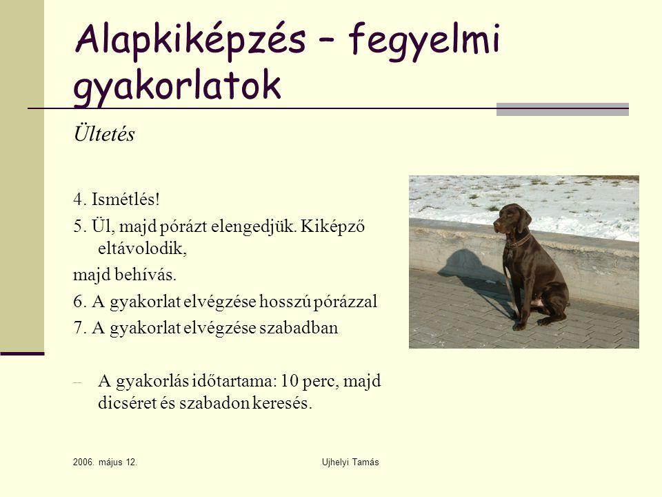 2006.május 12. Ujhelyi Tamás Alapkiképzés – fegyelmi gyakorlatok Ültetés 4.