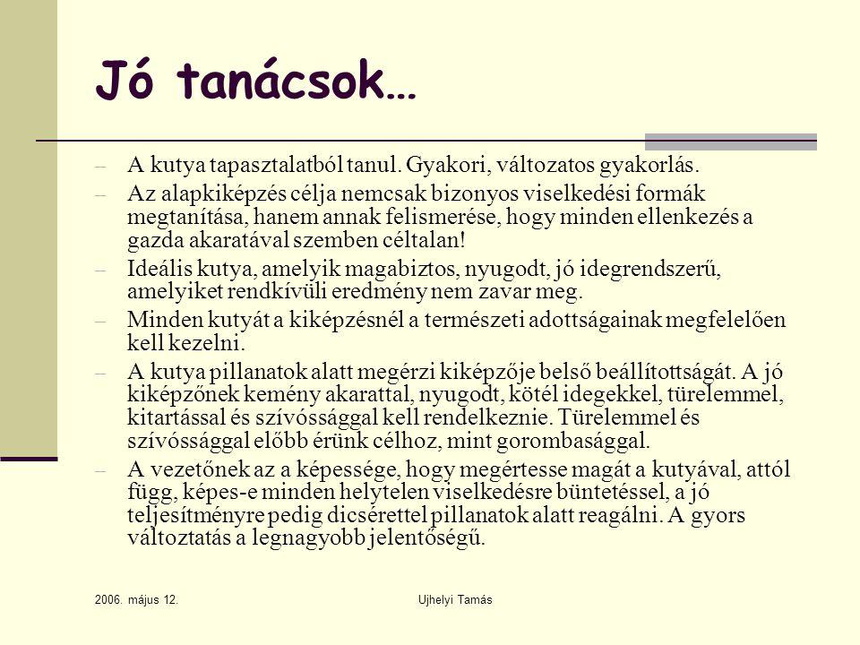 2006.május 12. Ujhelyi Tamás Jó tanácsok… – A kutya tapasztalatból tanul.