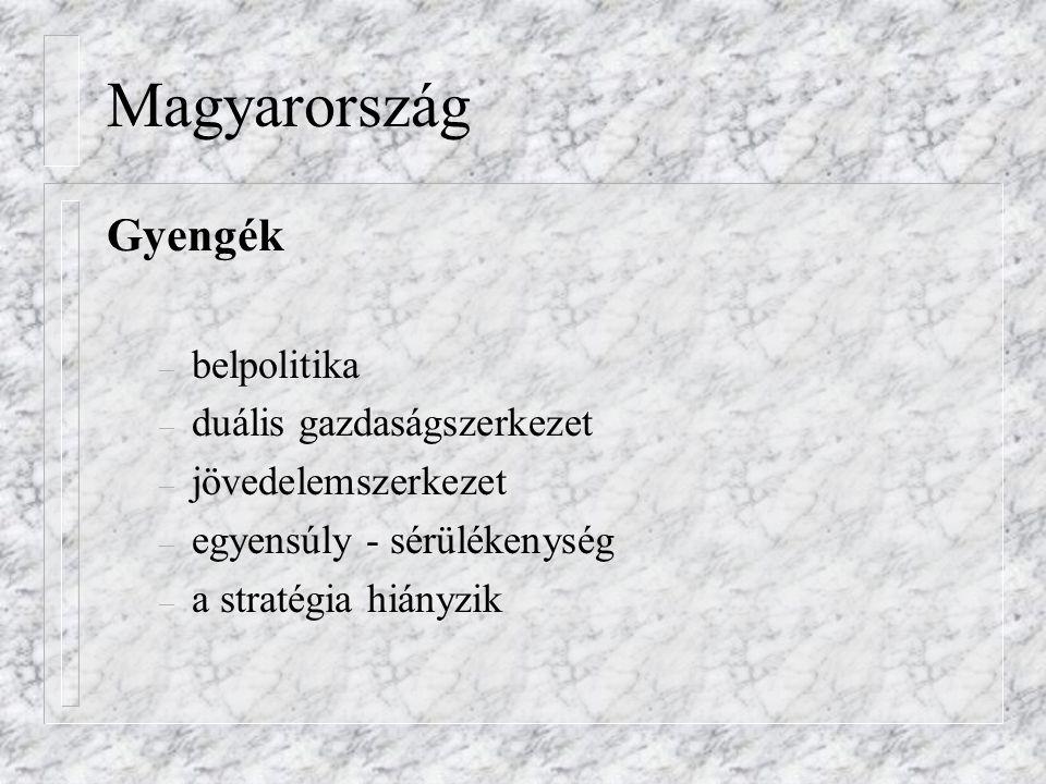 Magyarország Gyengék – belpolitika – duális gazdaságszerkezet – jövedelemszerkezet – egyensúly - sérülékenység – a stratégia hiányzik