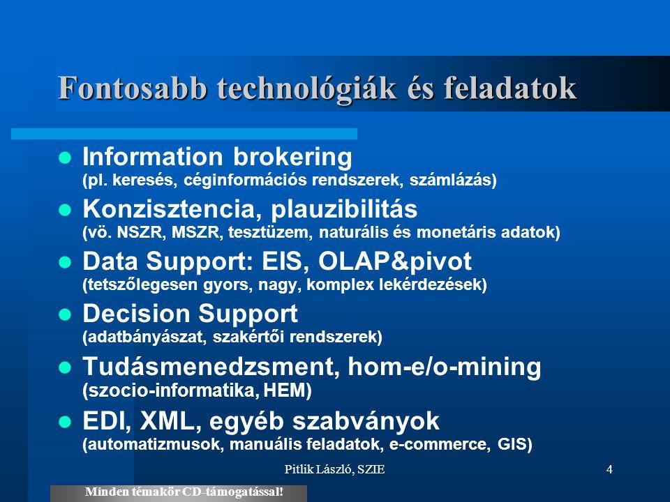 Pitlik László, SZIE4 Fontosabb technológiák és feladatok Information brokering (pl. keresés, céginformációs rendszerek, számlázás) Konzisztencia, plau