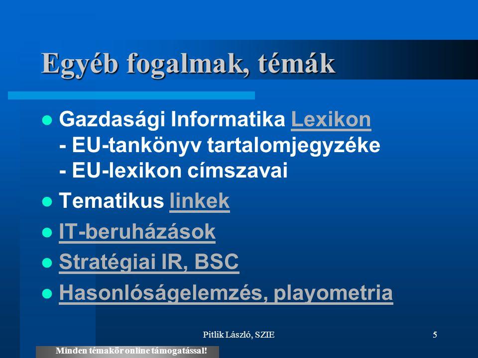 Pitlik László, SZIE5 Egyéb fogalmak, témák Gazdasági Informatika Lexikon - EU-tankönyv tartalomjegyzéke - EU-lexikon címszavaiLexikon Tematikus linkek