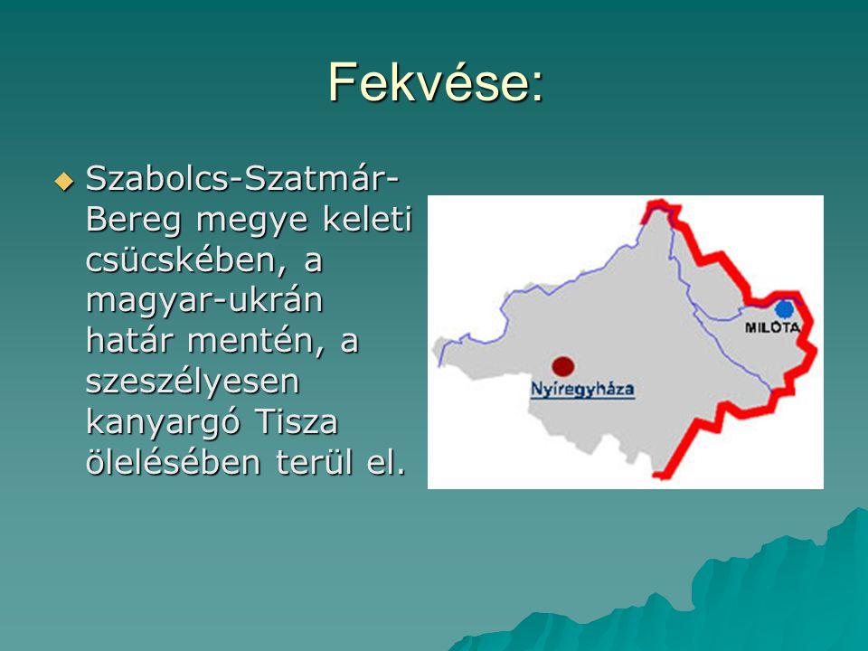 Fekvése:  Szabolcs-Szatmár- Bereg megye keleti csücskében, a magyar-ukrán határ mentén, a szeszélyesen kanyargó Tisza ölelésében terül el.