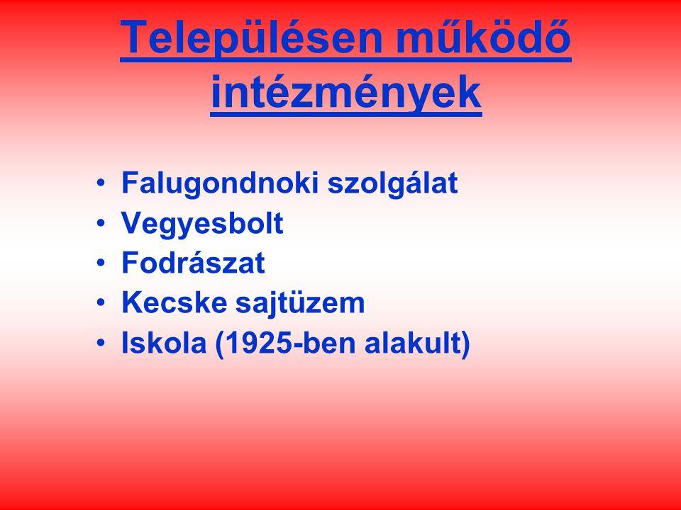 Településen működő intézmények Falugondnoki szolgálat Vegyesbolt Fodrászat Kecske sajtüzem Iskola (1925-ben alakult)