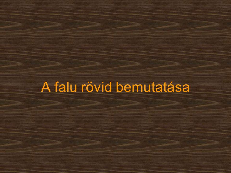 Megközelíthető ♦ Budapest felől: ● 7-es főúton Balatonszentgyörgyig, majd 76-os főúton Alsó-nemesapátin át Nemesapátiig ● 7-es főúton Székesfehérvárig, utána a 8-as számú főúton Csórig, majd Veszprémen át az Ajka, Sümeg, Alibánfa, Alsó-nemesapáti, Nemesapáti útvonalon ♦ Debrecen felől: ●4-es számú főúton Szolnokon át Budapestig, utána pedig az előzőekben leírt módon