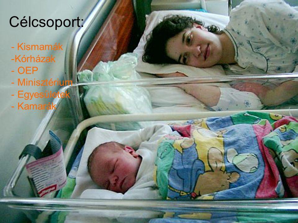 Kiinduló állapot,helyzetfelmérés Kiinduló állapót,helyzetfelmérés -Az egészségügy fejlődése Magyarországon - WHO,ENSZ,UNICEF - A kismamák szempontjai - Kórházak szolgáltatásaik