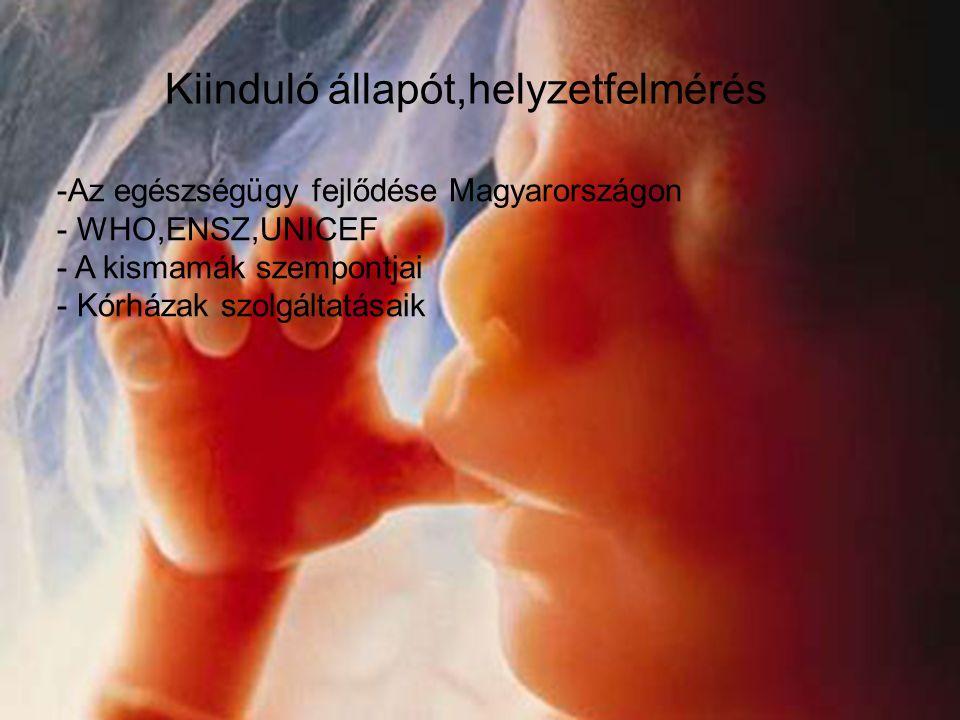 Kiinduló állapot,helyzetfelmérés Kiinduló állapót,helyzetfelmérés -Az egészségügy fejlődése Magyarországon - WHO,ENSZ,UNICEF - A kismamák szempontjai