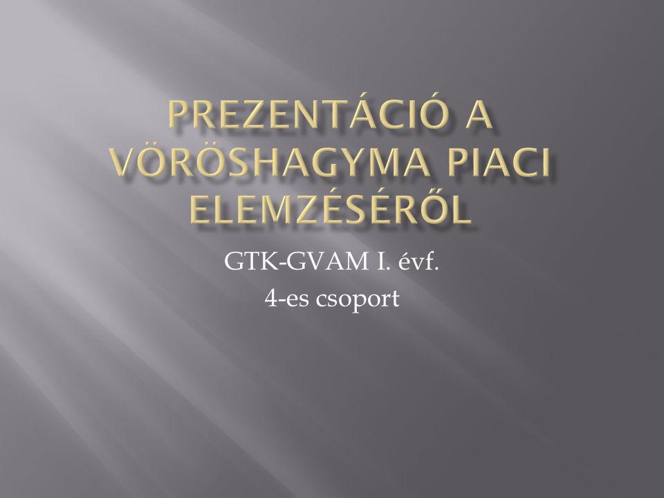 GTK-GVAM I. évf. 4-es csoport