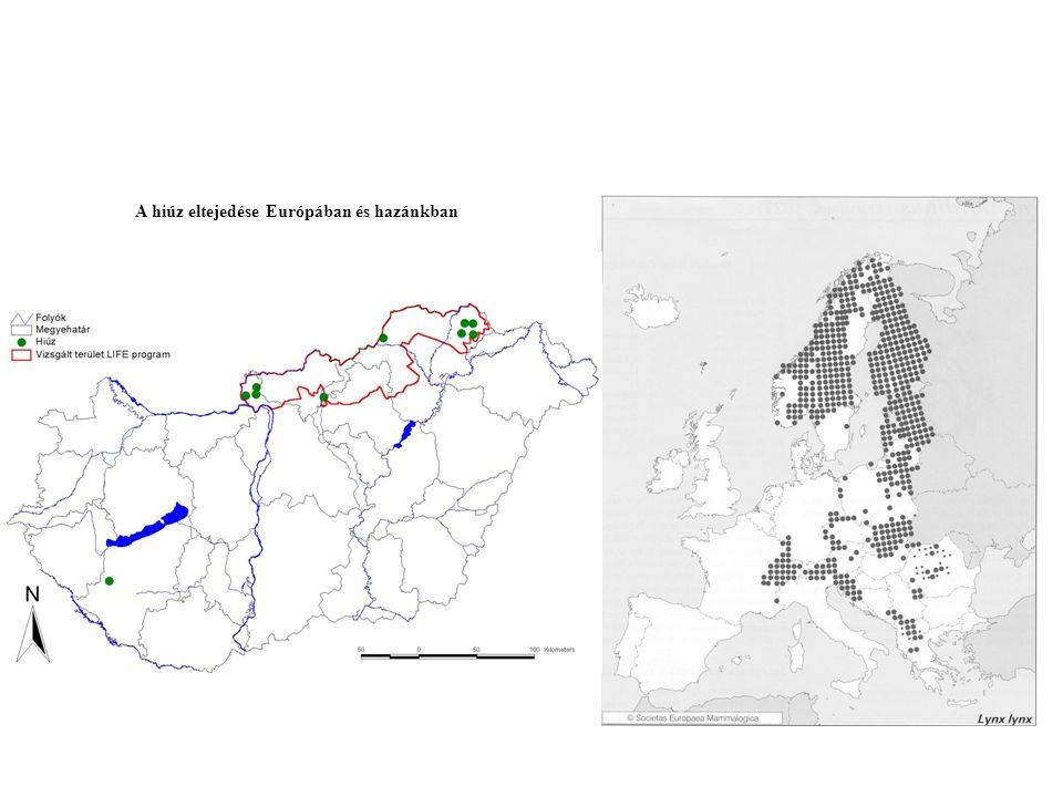 A hiúz eltejedése Európában és hazánkban