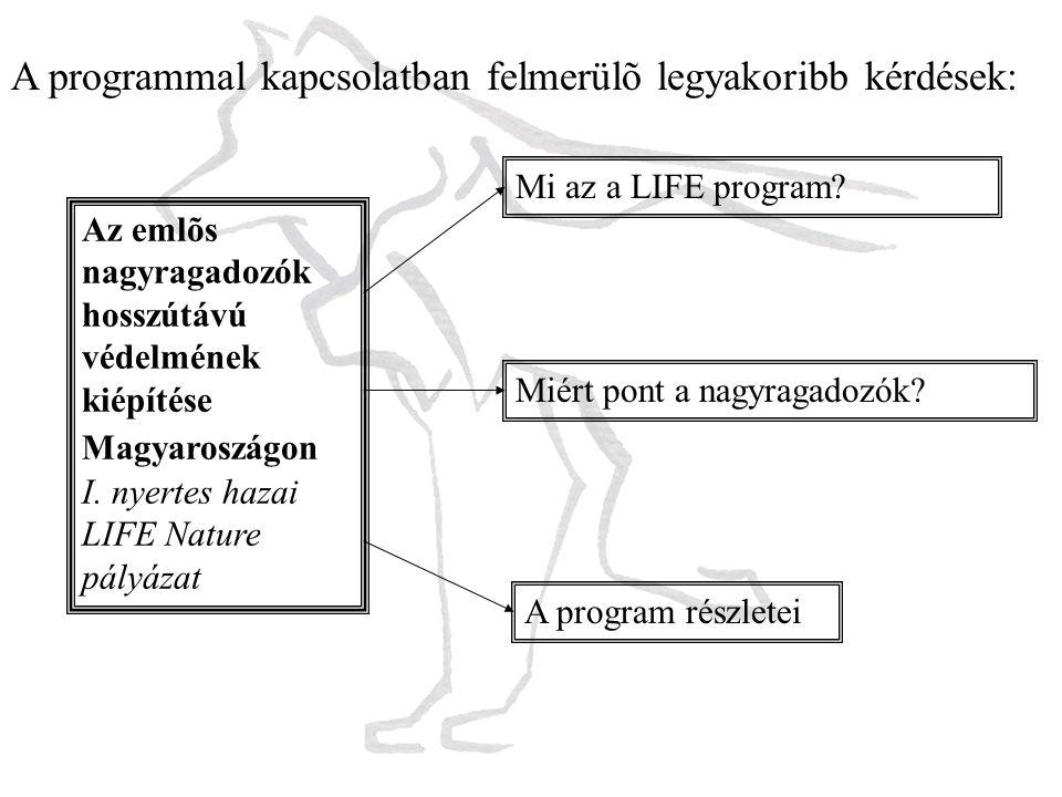 Mi az a LIFE program? Miért pont a nagyragadozók? A program részletei Az emlõs nagyragadozók hosszútávú védelmének kiépítése Magyaroszágon I. nyertes