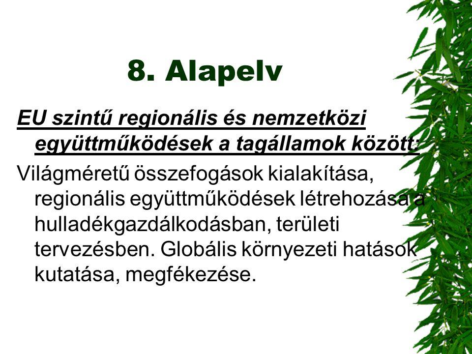 8. Alapelv EU szintű regionális és nemzetközi együttműködések a tagállamok között: Világméretű összefogások kialakítása, regionális együttműködések lé