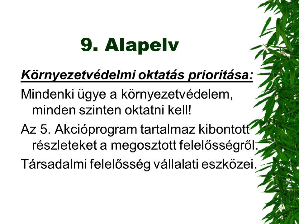 9. Alapelv Környezetvédelmi oktatás prioritása: Mindenki ügye a környezetvédelem, minden szinten oktatni kell! Az 5. Akcióprogram tartalmaz kibontott