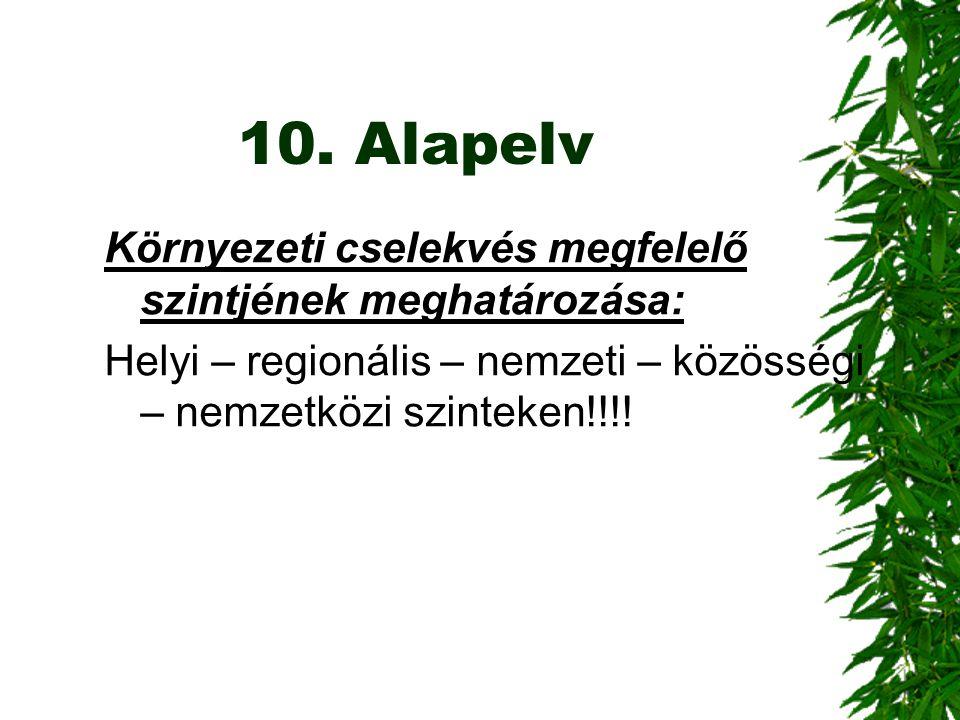 10. Alapelv Környezeti cselekvés megfelelő szintjének meghatározása: Helyi – regionális – nemzeti – közösségi – nemzetközi szinteken!!!!