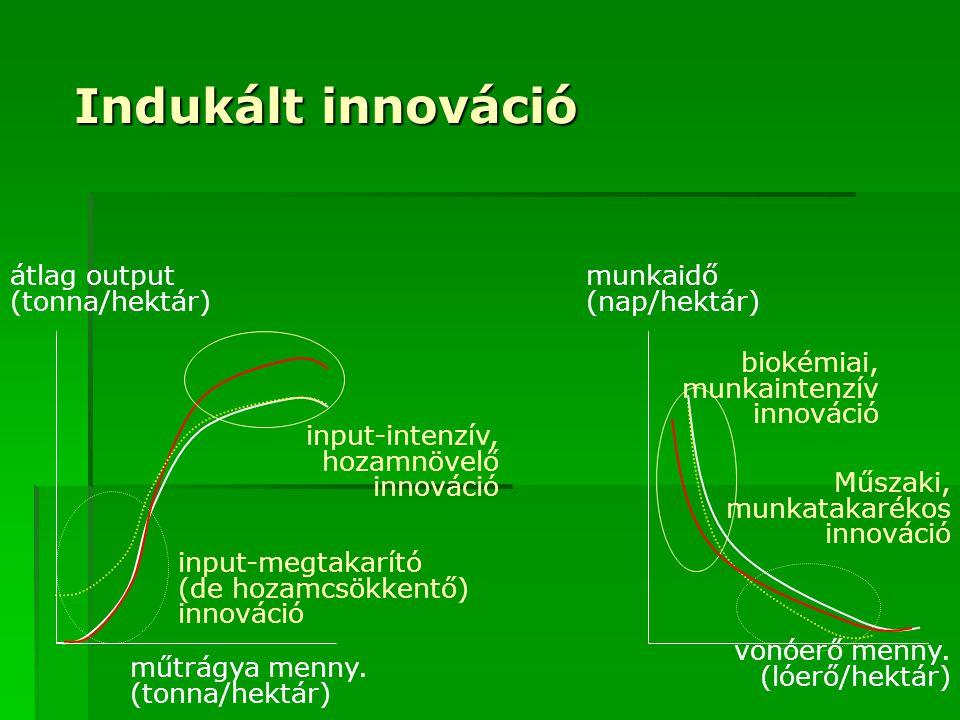 Indukált innováció átlag output (tonna/hektár) műtrágya menny.