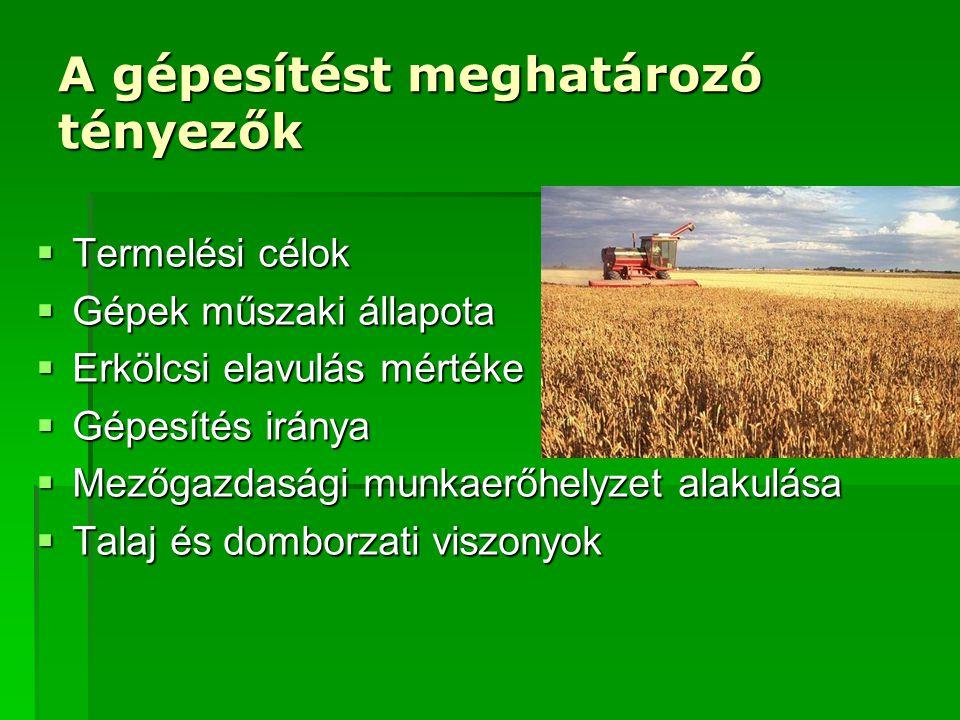 A gépesítést meghatározó tényezők  Termelési célok  Gépek műszaki állapota  Erkölcsi elavulás mértéke  Gépesítés iránya  Mezőgazdasági munkaerőhelyzet alakulása  Talaj és domborzati viszonyok