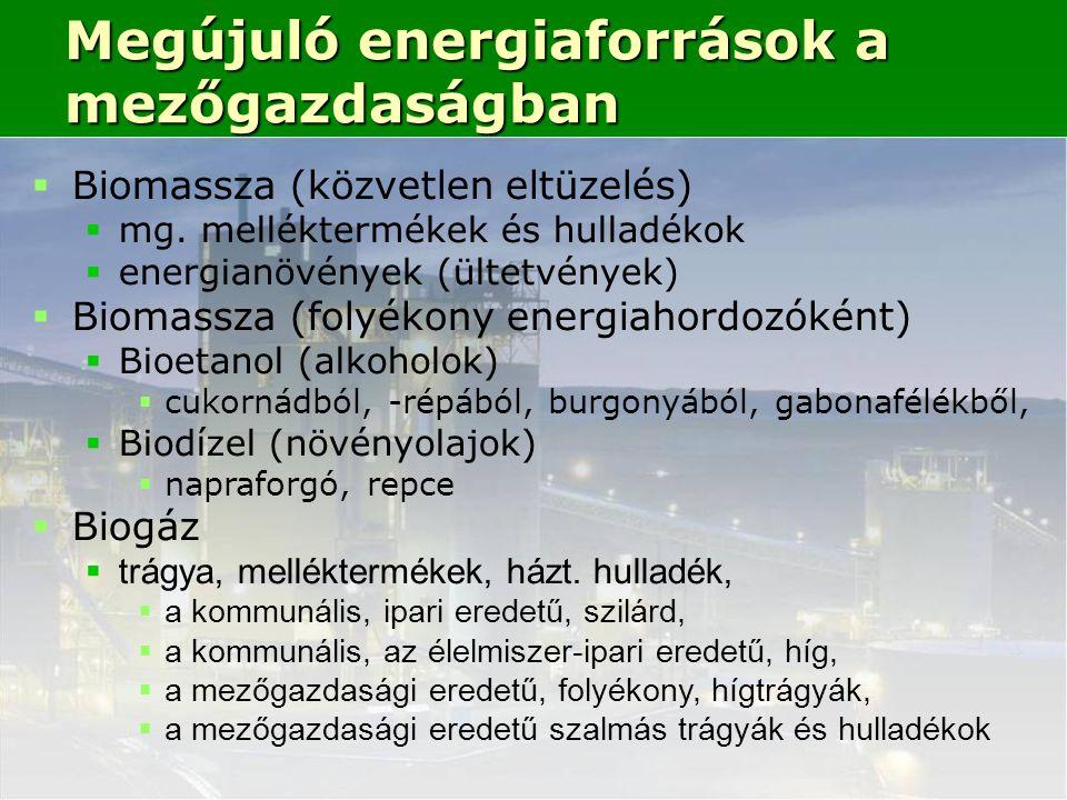  Biomassza (közvetlen eltüzelés)  mg.