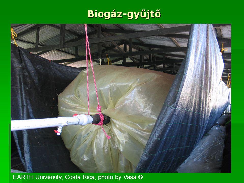 Biogáz-gyűjtő