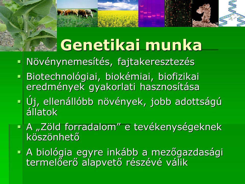"""Genetikai munka  Növénynemesítés, fajtakeresztezés  Biotechnológiai, biokémiai, biofizikai eredmények gyakorlati hasznosítása  Új, ellenállóbb növények, jobb adottságú állatok  A """"Zöld forradalom e tevékenységeknek köszönhető  A biológia egyre inkább a mezőgazdasági termelőerő alapvető részévé válik"""