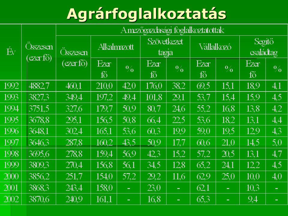 Agrárnépesség Korcsoportok A munkaerő korösszetétel szerinti megoszlása a mezőgazdaságban (%) 199019962001 14-29 év 23,521,817,9 30-39 év 31,025,923,1 40-49 év 27,235,134,0 50-X év 18,317,225,0 Összesen:100100100