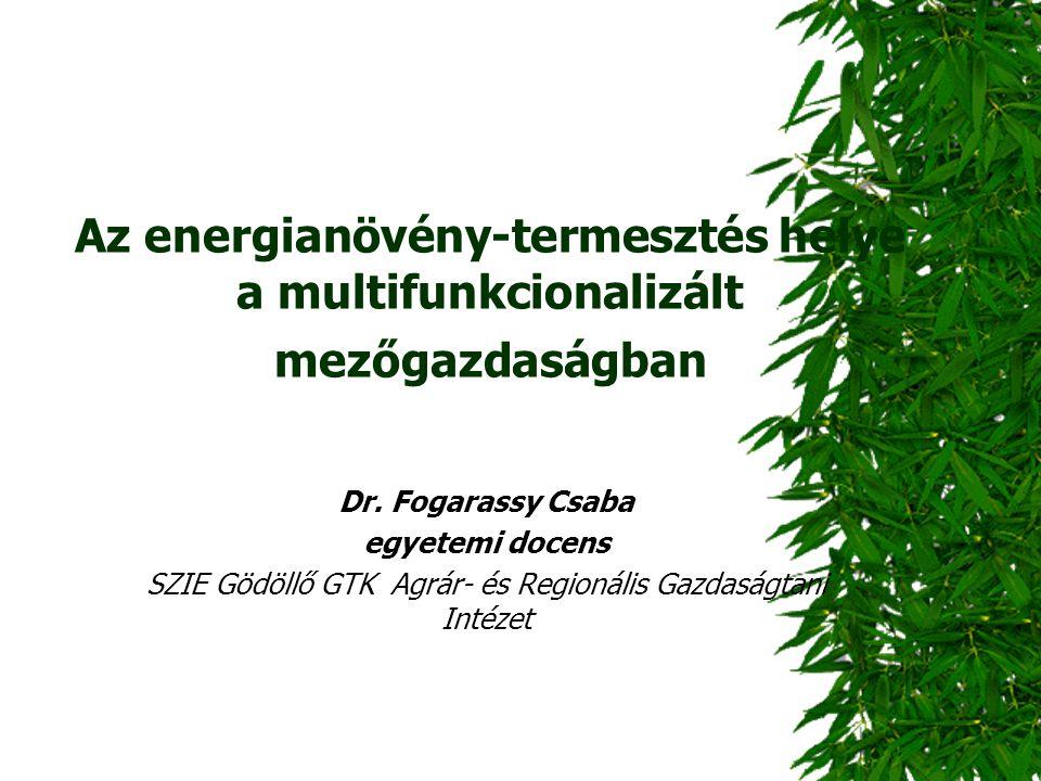 Az energianövény-termesztés helye a multifunkcionalizált mezőgazdaságban Dr. Fogarassy Csaba egyetemi docens SZIE Gödöllő GTK Agrár- és Regionális Gaz