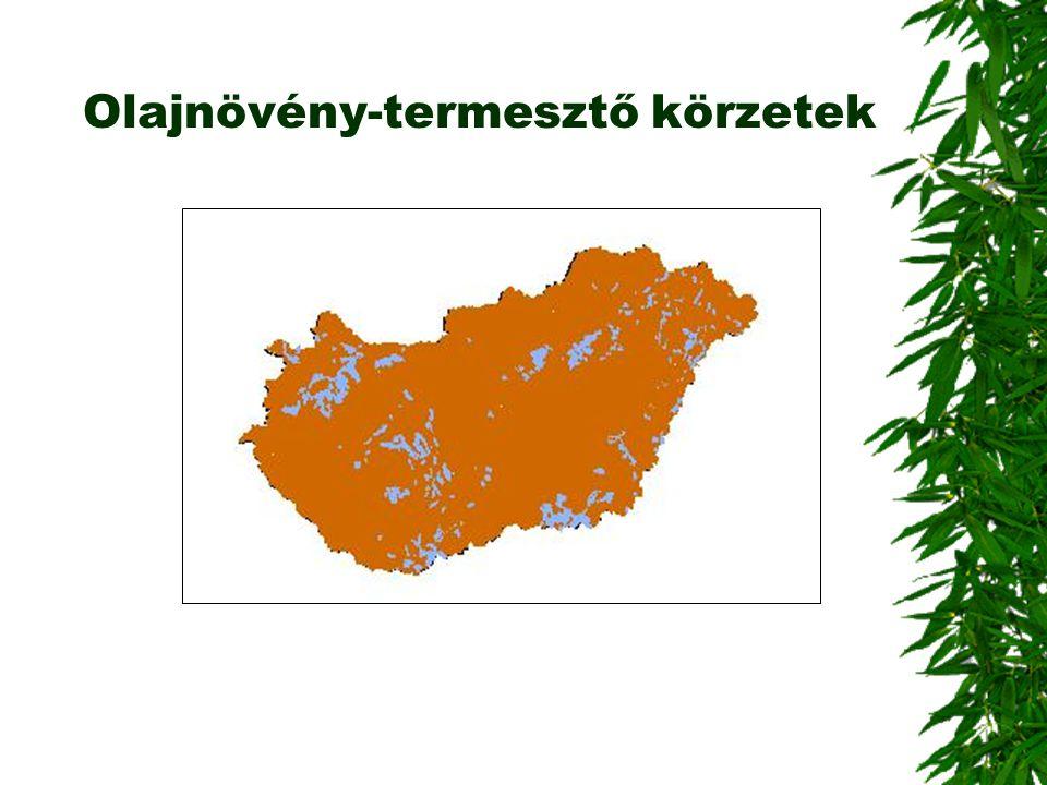 Olajnövény-termesztő körzetek