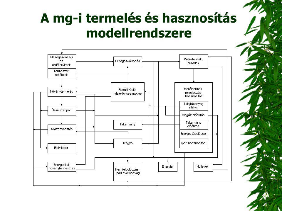 A mg-i termelés és hasznosítás modellrendszere