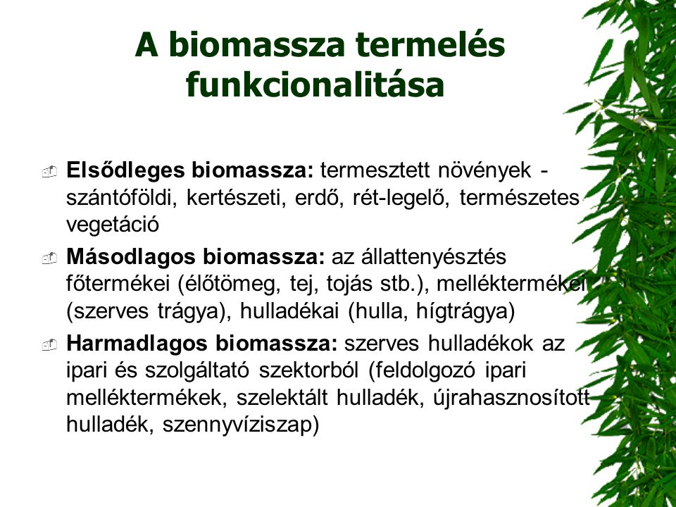 A biomassza termelés funkcionalitása  Elsődleges biomassza: termesztett növények - szántóföldi, kertészeti, erdő, rét-legelő, természetes vegetáció 