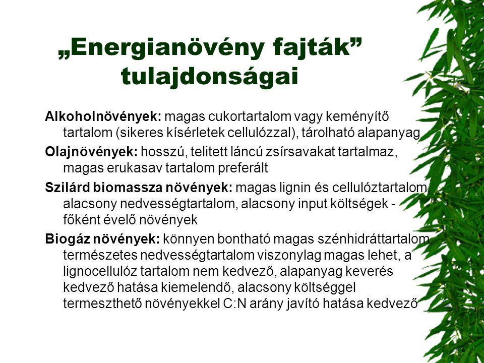 """""""Energianövény fajták"""" tulajdonságai Alkoholnövények: magas cukortartalom vagy keményítő tartalom (sikeres kísérletek cellulózzal), tárolható alapanya"""