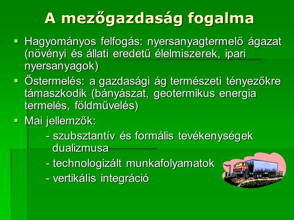 A mezőgazdaság fogalma  Hagyományos felfogás: nyersanyagtermelő ágazat (növényi és állati eredetű élelmiszerek, ipari nyersanyagok)  Őstermelés: a g