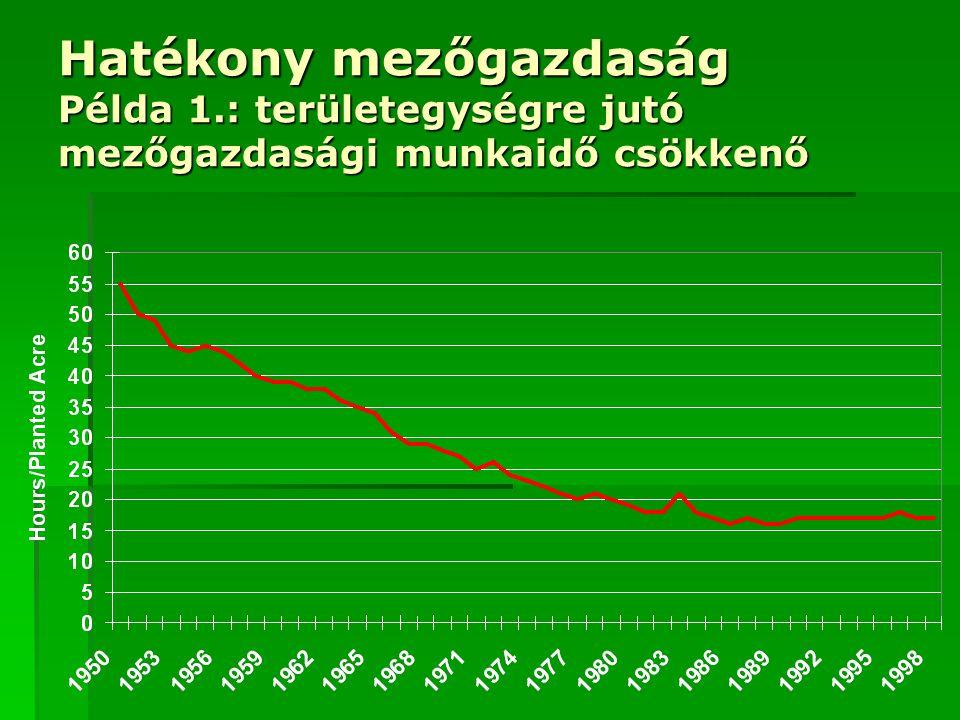 Hatékony mezőgazdaság Példa 1.: területegységre jutó mezőgazdasági munkaidő csökkenő