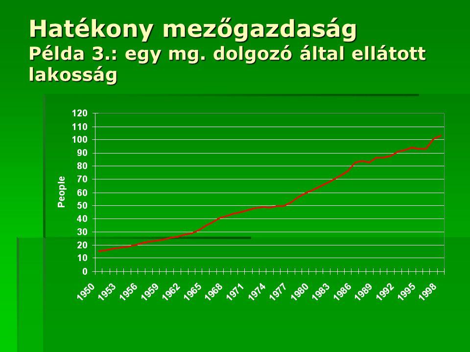 Hatékony mezőgazdaság Példa 3.: egy mg. dolgozó által ellátott lakosság