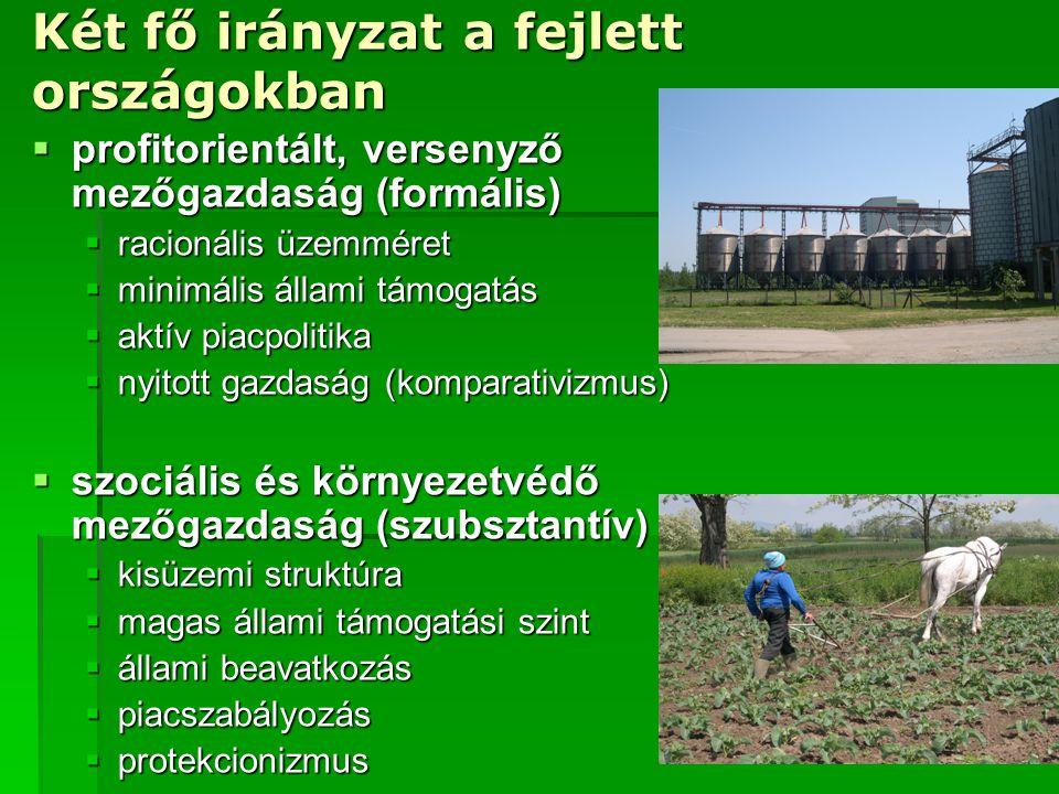 Két fő irányzat a fejlett országokban  profitorientált, versenyző mezőgazdaság (formális)  racionális üzemméret  minimális állami támogatás  aktív
