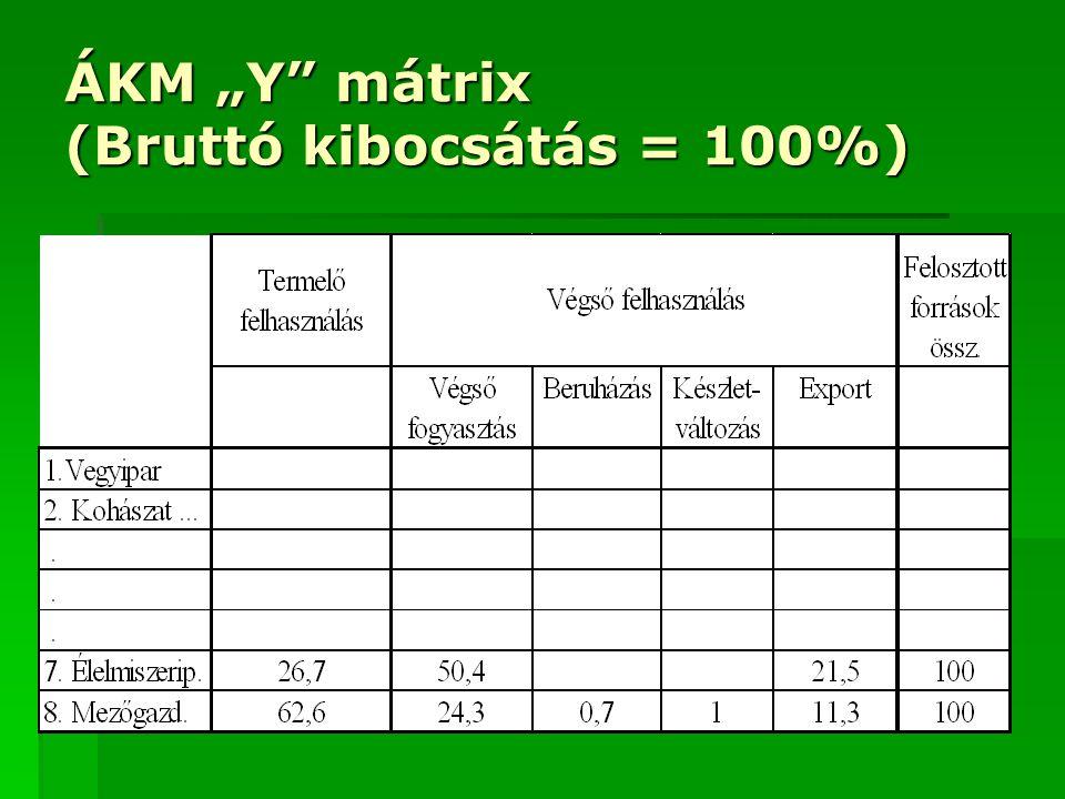 """ÁKM """"Y"""" mátrix (Bruttó kibocsátás = 100%)"""