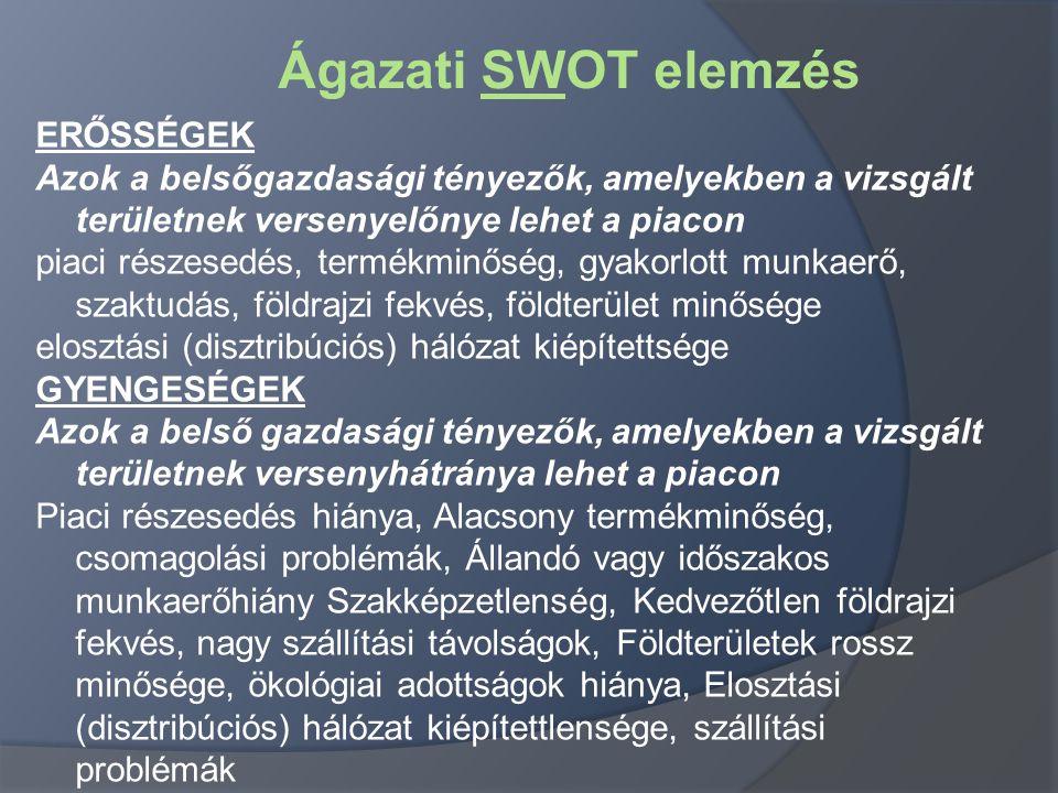 Ágazati SWOT elemzés ERŐSSÉGEK Azok a belsőgazdasági tényezők, amelyekben a vizsgált területnek versenyelőnye lehet a piacon piaci részesedés, termékm