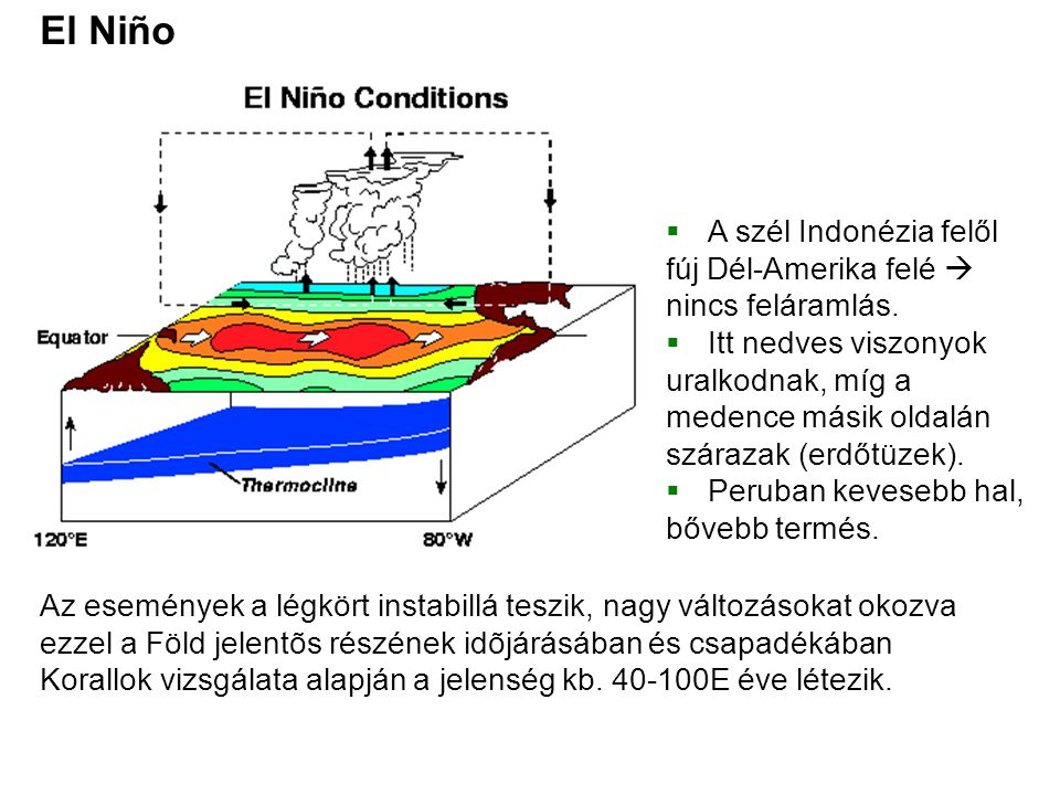 El Niño  A szél Indonézia felől fúj Dél-Amerika felé  nincs feláramlás.  Itt nedves viszonyok uralkodnak, míg a medence másik oldalán szárazak (erd