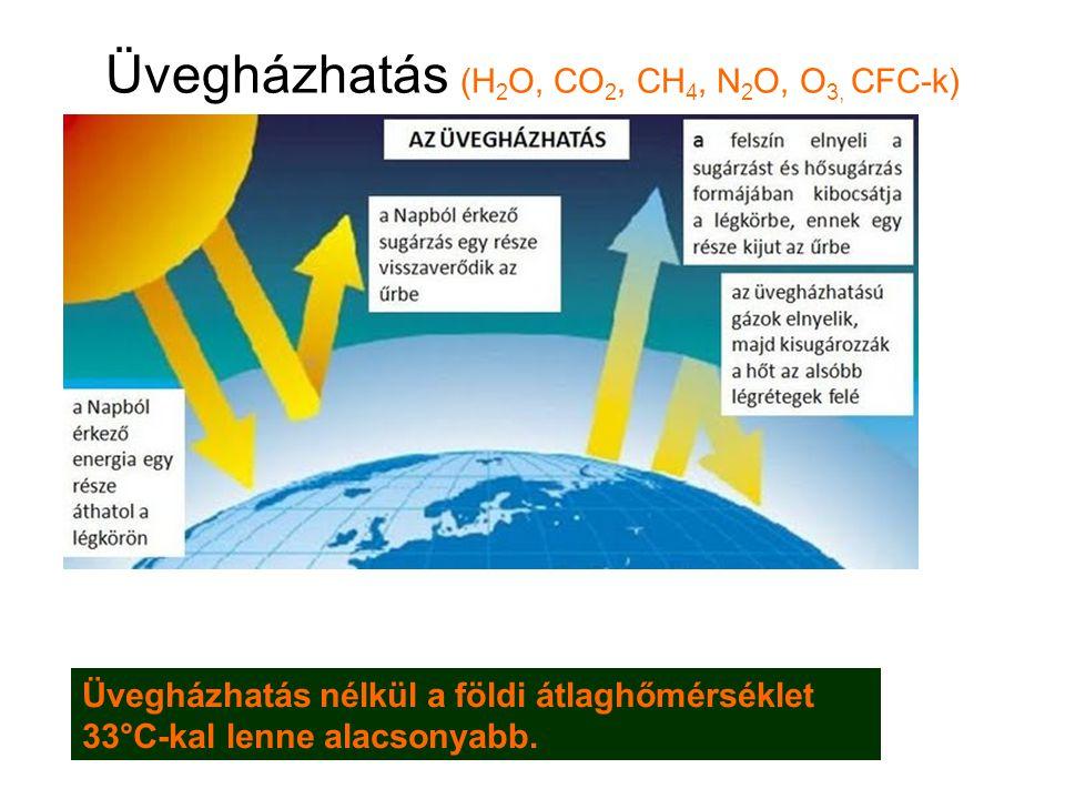 Üvegházhatás (H 2 O, CO 2, CH 4, N 2 O, O 3, CFC-k) Üvegházhatás nélkül a földi átlaghőmérséklet 33°C-kal lenne alacsonyabb.