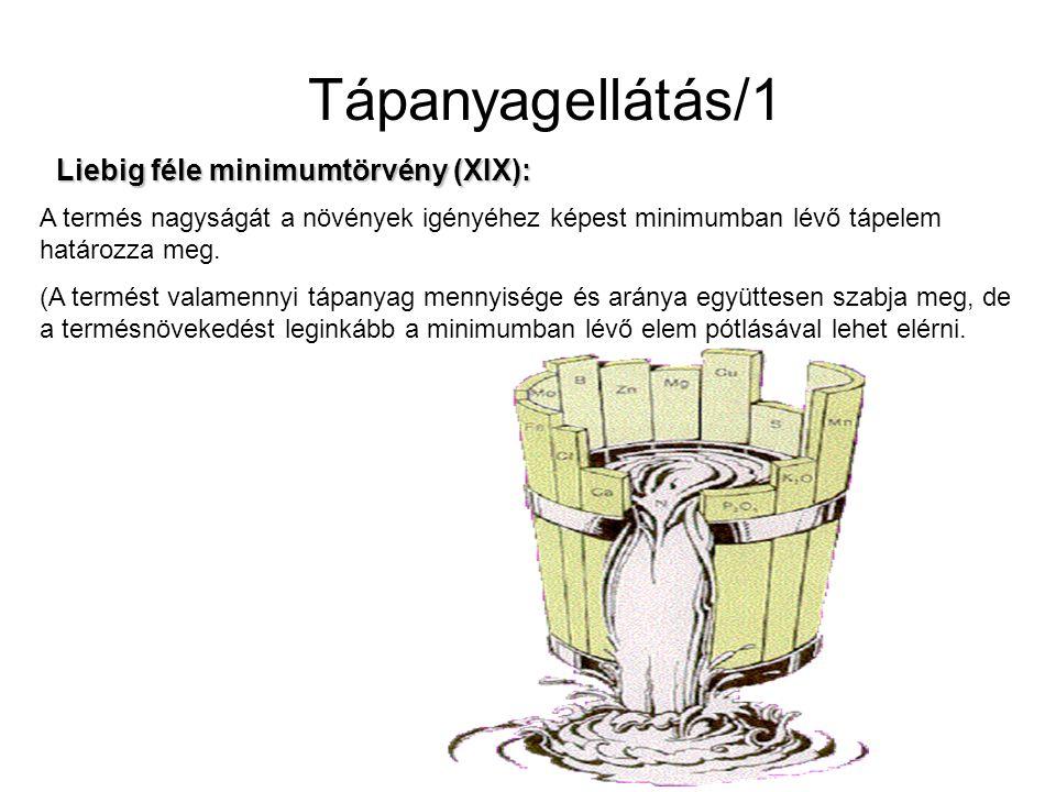 Tápanyagellátás/1 Liebig féle minimumtörvény (XIX): A termés nagyságát a növények igényéhez képest minimumban lévő tápelem határozza meg. (A termést v