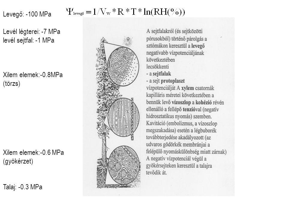 Rn:nettó radiáció (összes↓-összes↑) H: érzékelhető/szenzibilis hőáram L: a (víz) párolgás látens hőmennyisége (2 440J/g) E: evapotranszspiráció Bowen arány: H/L*E Rn=H+LE+G+P