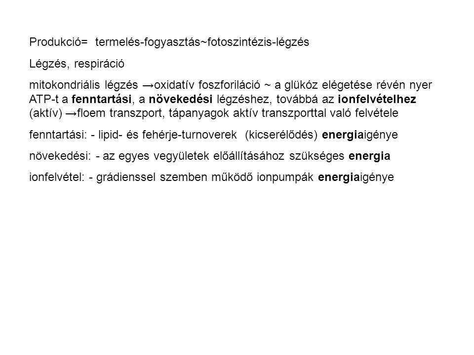 Nettó primer produkció (g/m2/év) A vegetációs periódusra integrált NDVI..
