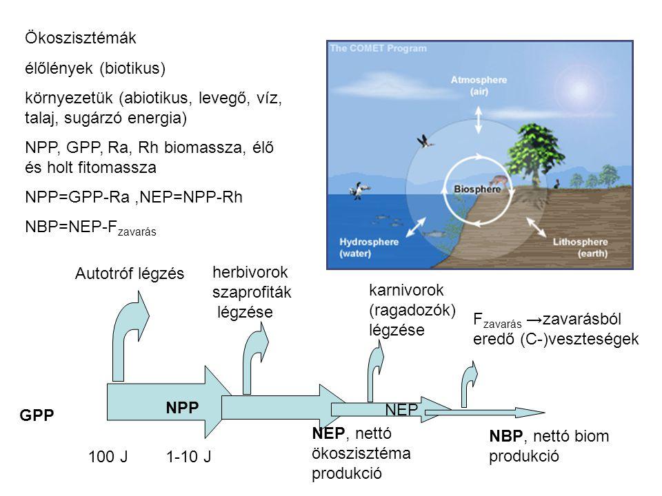 Dekompozíció, a szerves anyag lebomlása (lebontók -- a felvett energia (GPP) legnagyobb része áthalad) NPP Avarképződés és dBLA bomlás (exponenciális) A t =A 0 e -kt A t,0 : az avar tömege a t-ik és a 0-ik időpillanatban e: a természetes logaritmus alapszáma k: a bomlási ráta (1/év) 1/k: átlagos tartózkodási idő k= éves avarmennyiség/a talajon lévő avarmennyiség k=0.1 → mérsékeltövi fenyvesek.....