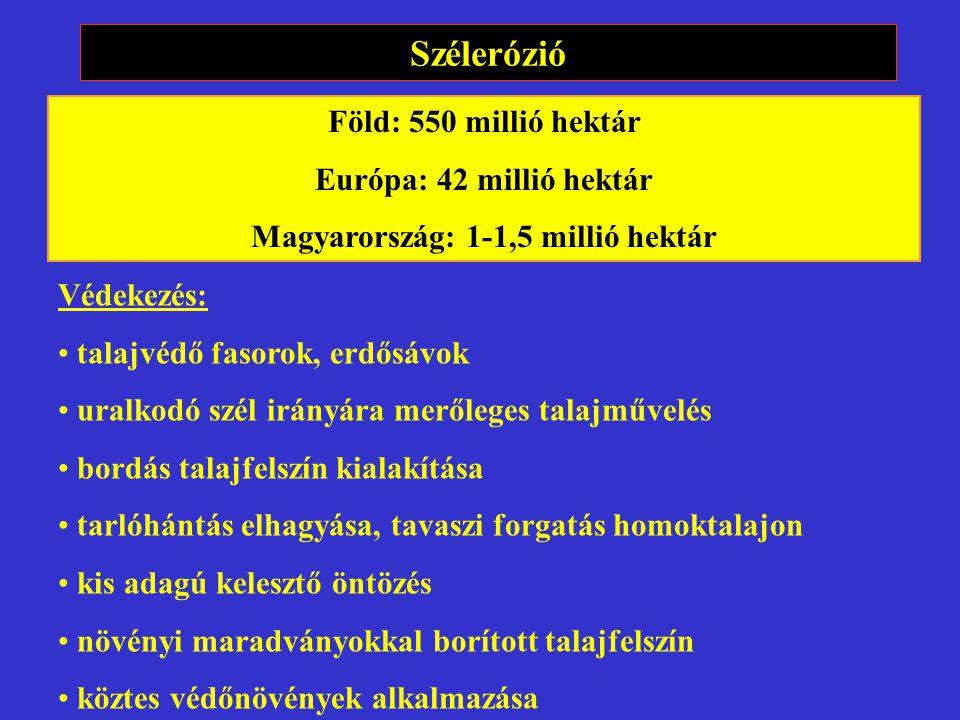 Szélerózió Föld: 550 millió hektár Európa: 42 millió hektár Magyarország: 1-1,5 millió hektár Védekezés: talajvédő fasorok, erdősávok uralkodó szél ir