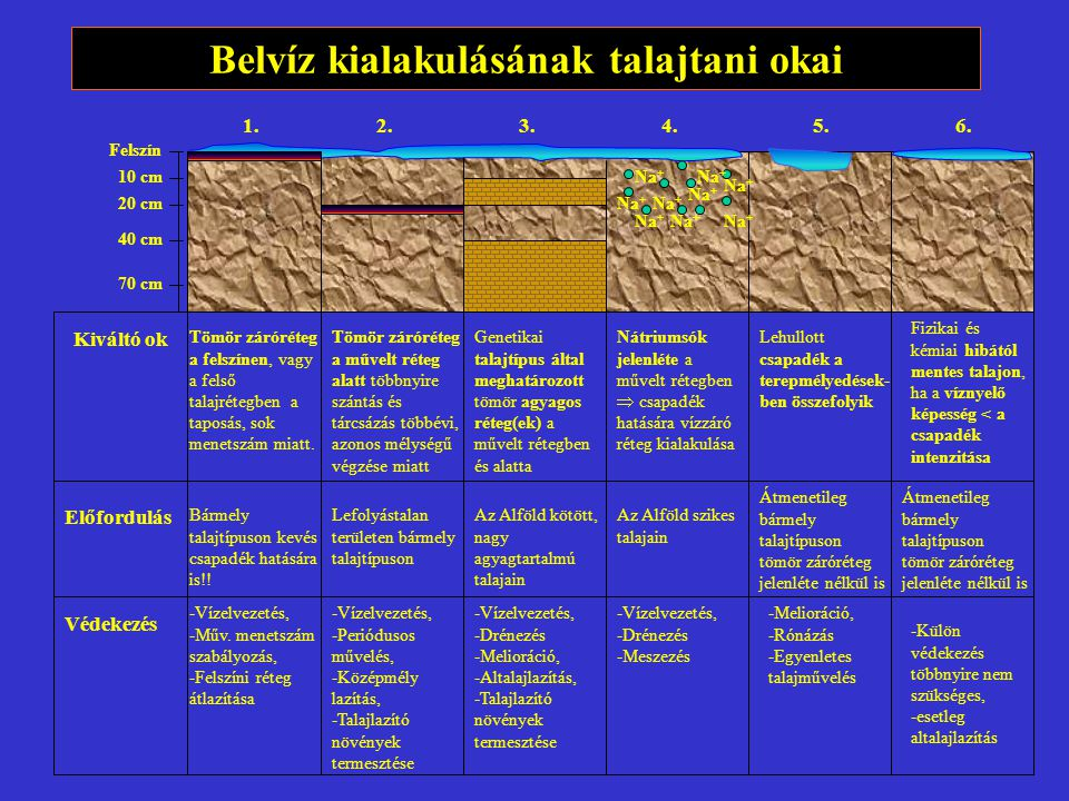 Belvíz kialakulásának talajtani okai Felszín 10 cm 20 cm 40 cm 70 cm Kiváltó ok Előfordulás Védekezés Na + Tömör záróréteg a felszínen, vagy a felső talajrétegben a taposás, sok menetszám miatt.
