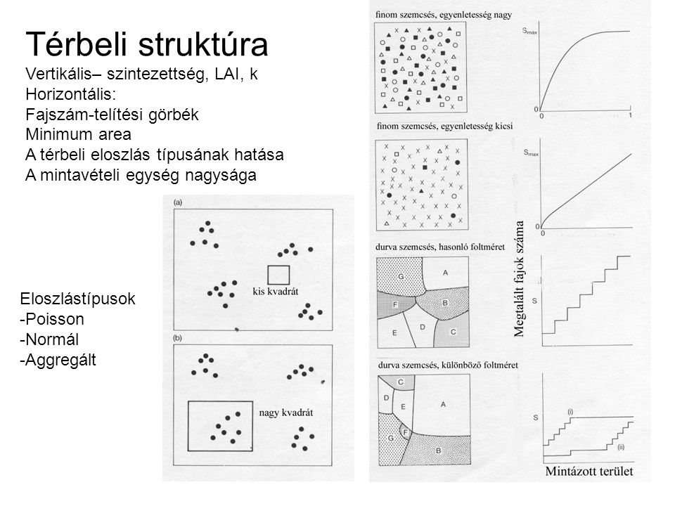 Térbeli struktúra Vertikális– szintezettség, LAI, k Horizontális: Fajszám-telítési görbék Minimum area A térbeli eloszlás típusának hatása A mintavételi egység nagysága Eloszlástípusok -Poisson -Normál -Aggregált