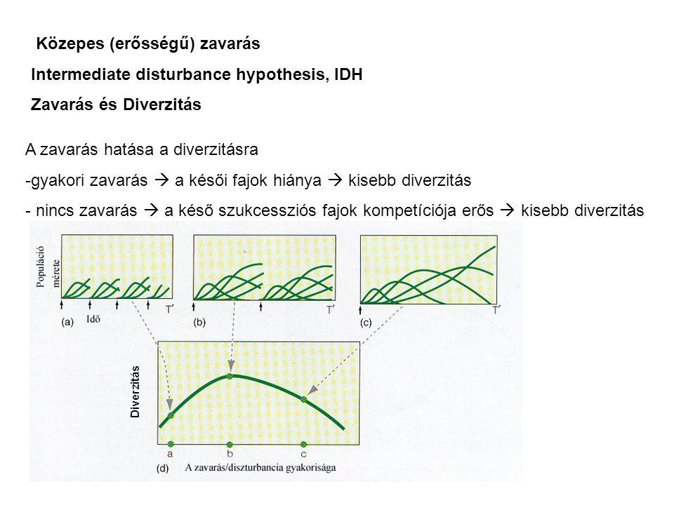 Diverzitás A zavarás hatása a diverzitásra -gyakori zavarás  a késői fajok hiánya  kisebb diverzitás - nincs zavarás  a késő szukcessziós fajok kompetíciója erős  kisebb diverzitás Közepes (erősségű) zavarás Intermediate disturbance hypothesis, IDH Zavarás és Diverzitás