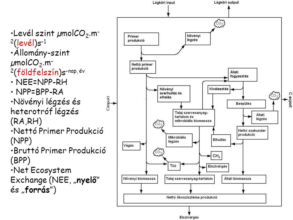 Levél szint µmolCO 2.m - 2 (levél)s -1 Állomány-szint µmolCO 2.m - 2 (földfelszín)s -nap, év NEE=NPP-RH NPP=BPP-RA Növényi légzés és heterotróf légzés
