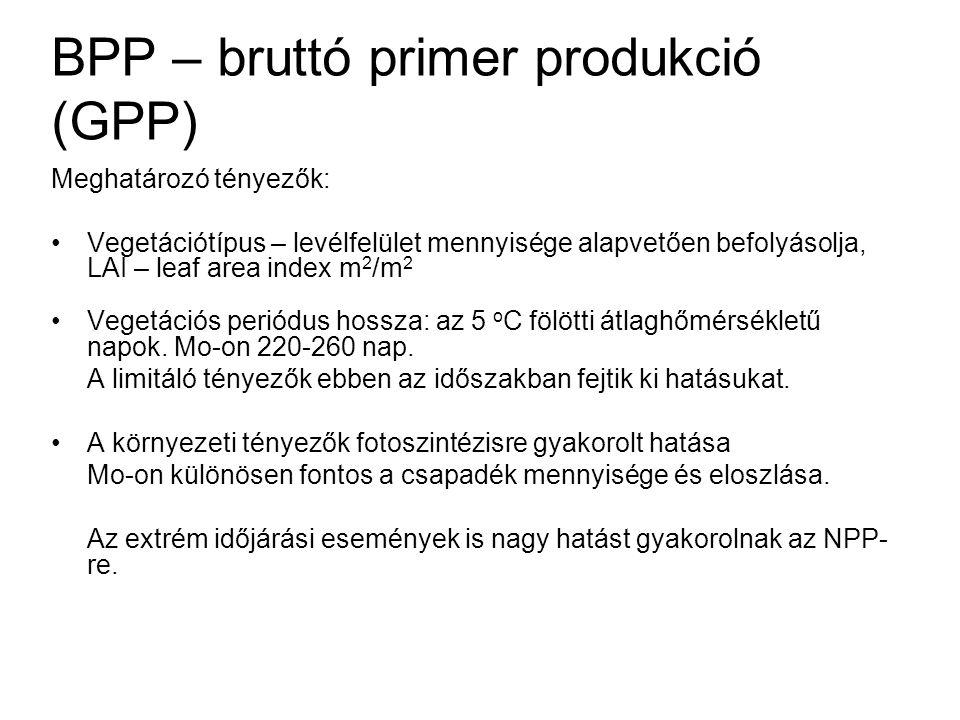 BPP – bruttó primer produkció (GPP) Meghatározó tényezők: Vegetációtípus – levélfelület mennyisége alapvetően befolyásolja, LAI – leaf area index m 2
