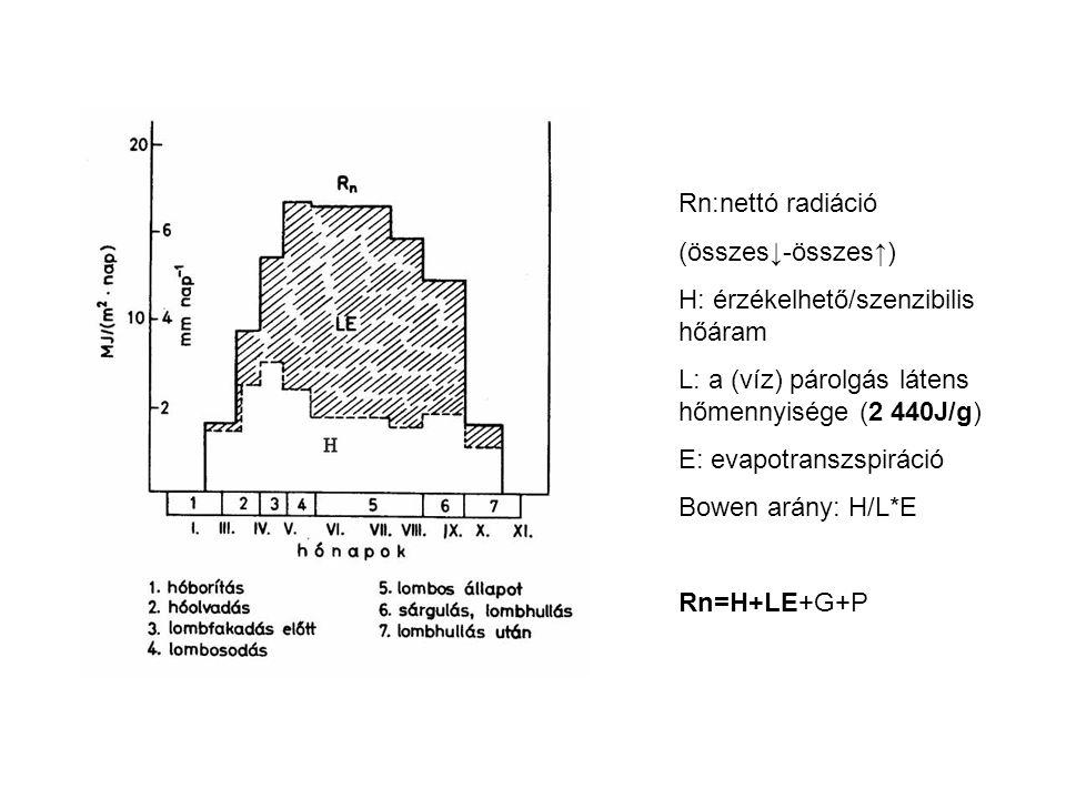 Rn:nettó radiáció (összes↓-összes↑) H: érzékelhető/szenzibilis hőáram L: a (víz) párolgás látens hőmennyisége (2 440J/g) E: evapotranszspiráció Bowen